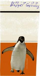 Sonntag aktuell Pinguin421