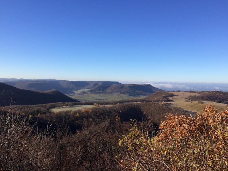 Blick vom Bolberg, mittig über dem Wald ist der Hohenzollern zu entdecken