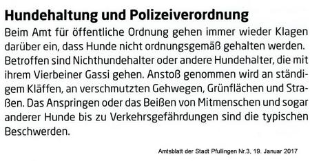 Pfullinger Amtsblatt 19.1. 2017